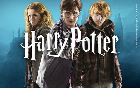 Discover our HARRY POTTER merch!