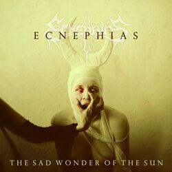 The sad wonder of the sun