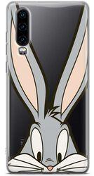 Bugs Close Up - Huawei