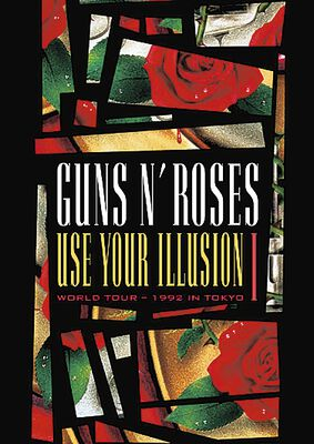 Use your illusion   Vol. I