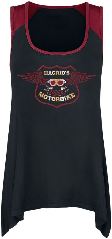 Hagrid's Motorbike