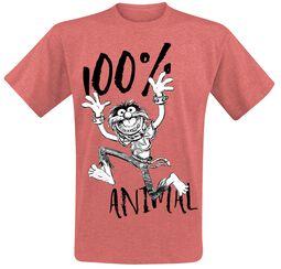 Animal - 100%