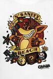Crash Team Racing - N' Sanity Beach