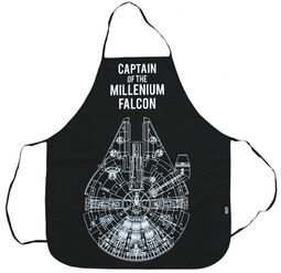 Captain Of The Millenium Falcon