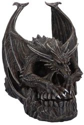 Draco Skull