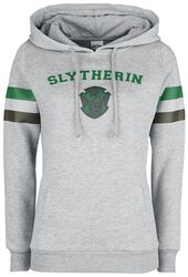 Slytherin - College Stripes