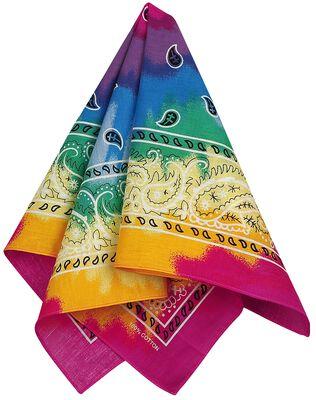 Tie Dye Paisley Rainbow