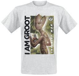 Infinity War - I Am Groot