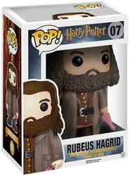 Rubeus Hagrid Vinyl Figure 07