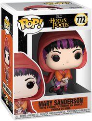 Mary Sanderson Vinyl Figure 772