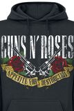 Appetite For Destruction - Banner