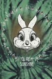 Thumper - You Are My Sunshine
