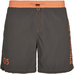 UC Logo Swim Shorts