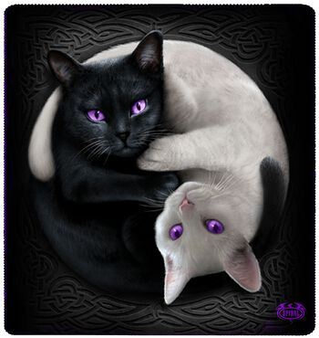 Yin Yang Cats Fleece Blanket