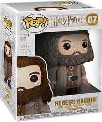 Rubeus Hagrid 07